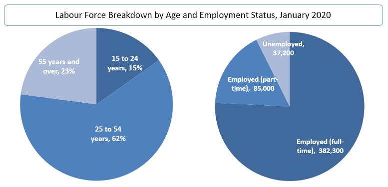Labour Force Breakdown by Age and Employment Status, January 2020